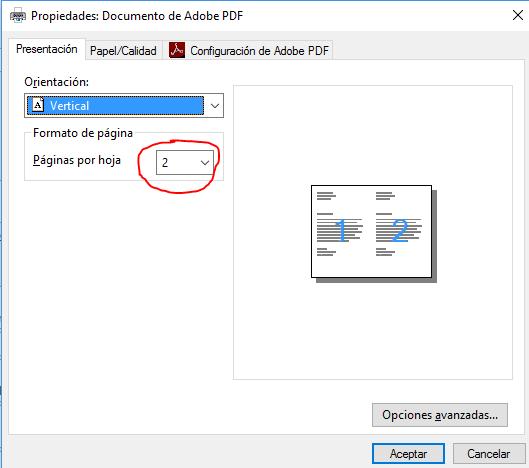 Muestra el cuadro de diálogo Propiedades de documento pdf en su ficha Presentación con el ajuste de dos páginas por hoja.
