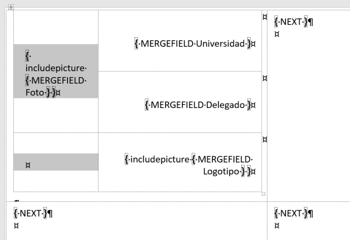 una tabla sin bordes para acomodar los campos de combinación, ya que incluyen imágenes y logos