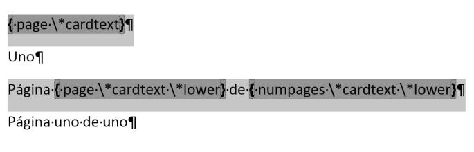 Muestra los códigos de campo y los modificadores para numerar páginas con letras