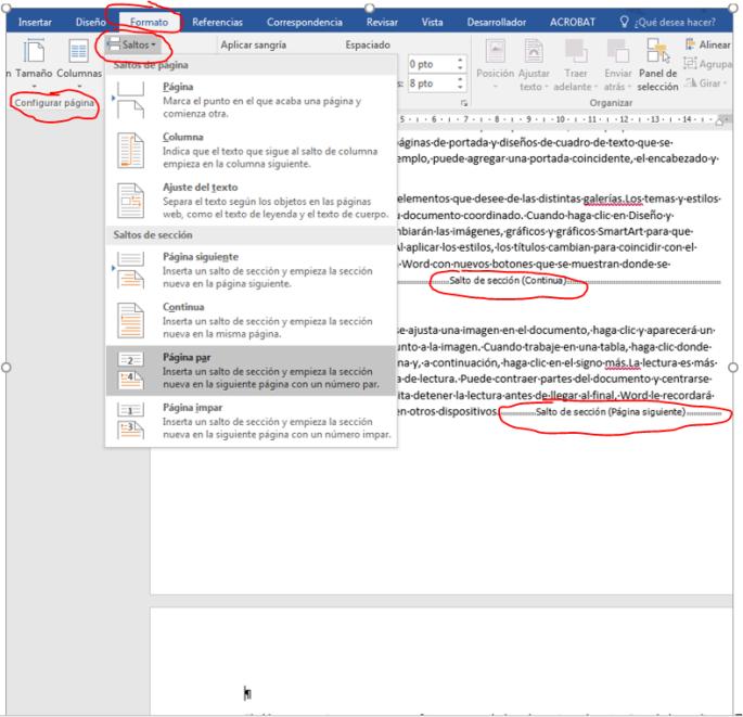 Muestra cómo insertar un salto de sección de página impar
